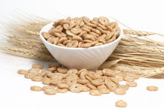 Cereal and Wheat ears Royalty Free Stock Photo
