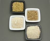 Cereal and wholemeal on gray matting Royalty Free Stock Photo