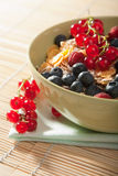 Cereal and wild berries Royalty Free Stock Image