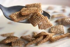 Cereal y leche Fotografía de archivo