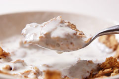 Cereal and yogurt. Cereal with  yogurt close up Stock Image