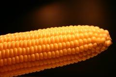 Cereale [3] Immagine Stock Libera da Diritti