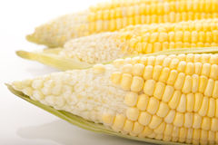 Cereale immagine stock libera da diritti