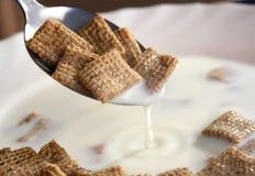 Cereale immagini stock