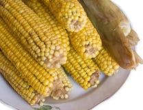 Cereale bollito Fotografia Stock Libera da Diritti