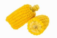 Cereale bollito Fotografie Stock Libere da Diritti