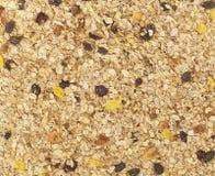 Cereale casalingo organico del Granola Granola o muesli della farina d'avena di struttura come fondo Vista superiore o piano-disp immagine stock