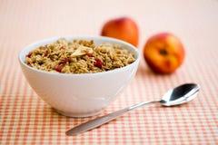Cereale da prima colazione Immagine Stock
