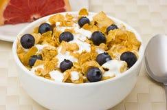 Cereale da prima colazione con i mirtilli, pompelmo. immagine stock libera da diritti