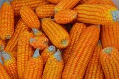 Cereale da vendere Immagini Stock Libere da Diritti