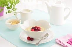 Cereale dei fiocchi di frumento con i mirtilli rossi Fotografie Stock