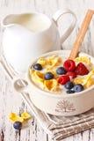 Cereale del fiocco di avena Immagini Stock