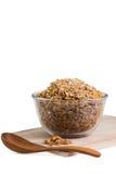 Cereale del Granola con i frutti secchi Immagini Stock Libere da Diritti