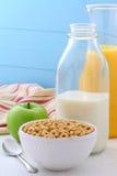 Cereale delizioso e sano delle noci del miele Fotografia Stock Libera da Diritti