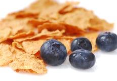 Cereale della crusca con i mirtilli Fotografia Stock