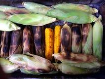 Cereale della griglia Fotografia Stock Libera da Diritti