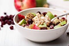 Cereale della mela dell'uva passa del mirtillo rosso Immagine Stock Libera da Diritti