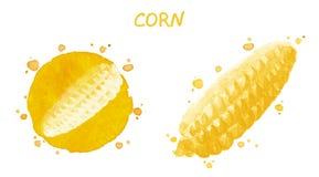 Cereale Disegno originale dell'acquerello Immagini Stock