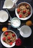 cereale e latte Immagine Stock Libera da Diritti