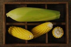Cereale giallo Fotografia Stock Libera da Diritti