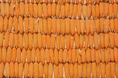 Cereale giallo Immagine Stock