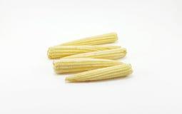Cereale giallo del bambino su fondo bianco Fotografia Stock