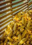 Cereale in granaio rurale molto vecchio immagini stock libere da diritti