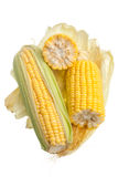 Cereale isolato su fondo bianco Fotografia Stock
