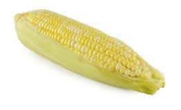 Cereale isolato su una priorità bassa bianca Immagini Stock