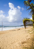 Cereale lungo del sacchetto della spiaggia della corte della sfera di scarica Fotografie Stock Libere da Diritti