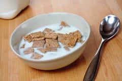 Cereale Malted Immagini Stock