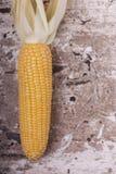 Cereale maturo giallo dolce sulla fine di legno del fondo su fotografia stock libera da diritti