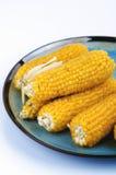 Cereale per popcorn Immagini Stock