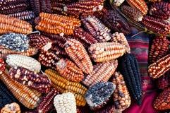 Cereale peruviano Fotografia Stock