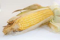 Cereale su fondo bianco Fotografia Stock