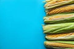 Cereale su un fondo blu, alimento sano, frutta immagine stock libera da diritti