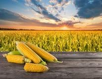 Cereale sulla tavola di legno con il campo verde sul campo di verde del fondo Fotografia Stock Libera da Diritti
