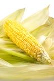 Cereale sulle bucce Fotografie Stock