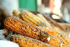 Cereale tostato Fotografia Stock Libera da Diritti