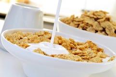 Cereales del yogur y de la harina de avena Foto de archivo libre de regalías