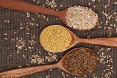 Cereales en las cucharas de madera Imágenes de archivo libres de regalías