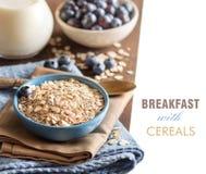 Cereales en un cuenco Fotos de archivo libres de regalías
