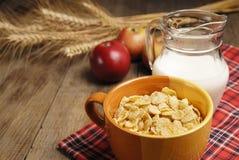 Cereales y leche imagen de archivo