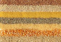 Cereali Fotografia Stock Libera da Diritti