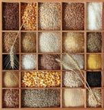 Cereali in casella di legno Fotografie Stock Libere da Diritti