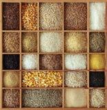 Cereali in casella di legno Immagine Stock