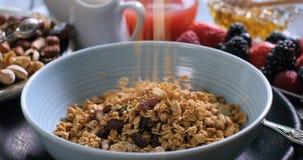 Cereali che cadono su una ciotola con le bacche ed i frutti asciutti Immagini Stock Libere da Diritti