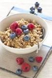 Cereali con i mirtilli ed i lamponi Fotografia Stock Libera da Diritti