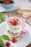 Cereali da prima colazione fotografia stock