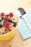 Cereali della cannella con la frutta Fotografie Stock Libere da Diritti